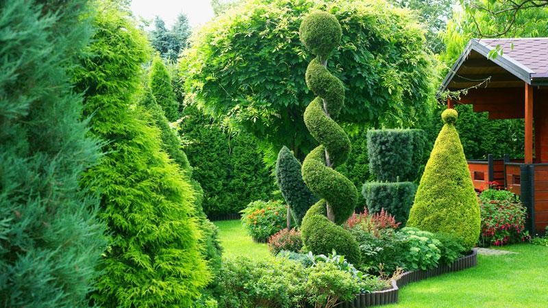 Bont Gartenbau Bäume und Sträucher