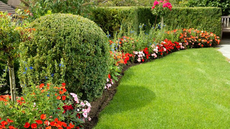 Bont Gartenbau Bepflanzung
