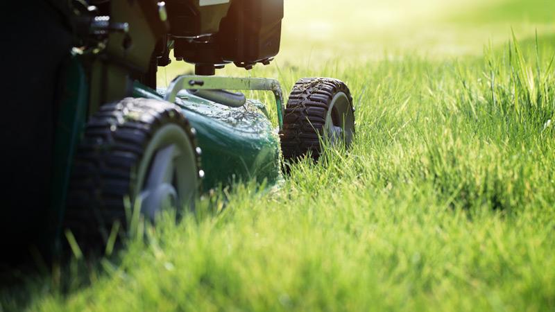 Bont Gartenbau Rasenpflege