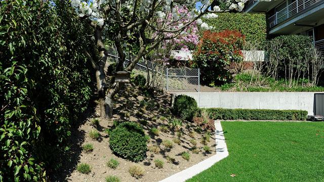 Bont Gartenbau –Nachher